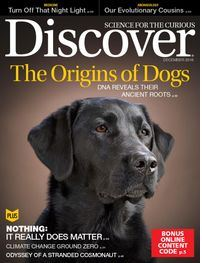 discover-dogs